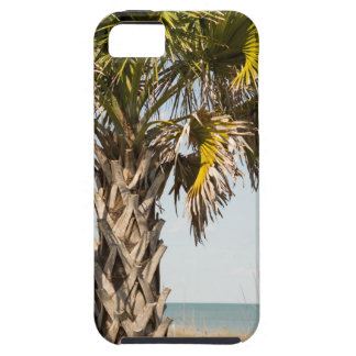 Palm Trees on Myrtle Beach East Coast Boardwalk iPhone 5 Covers
