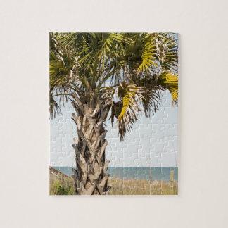 Palm Trees on Myrtle Beach East Coast Boardwalk Jigsaw Puzzle