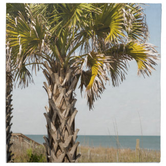 Palm Trees on Myrtle Beach East Coast Boardwalk Napkin
