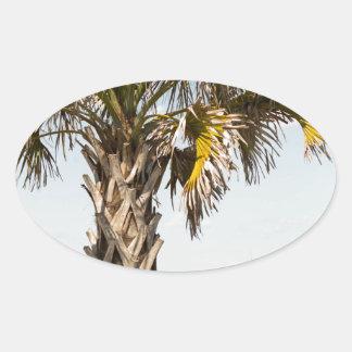 Palm Trees on Myrtle Beach East Coast Boardwalk Oval Sticker