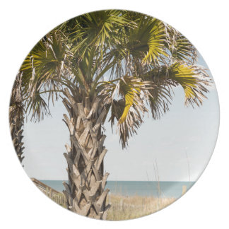 Palm Trees on Myrtle Beach East Coast Boardwalk Plate
