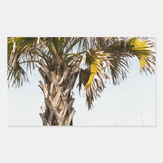 Palm Trees on Myrtle Beach East Coast Boardwalk Sticker