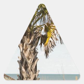 Palm Trees on Myrtle Beach East Coast Boardwalk Triangle Sticker