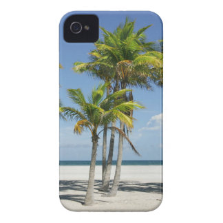 Palm Trees on Sunny Key Biscayne iPhone 4 Case
