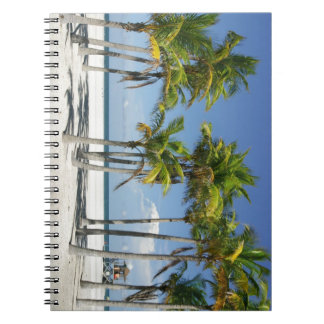 Palm Trees on Sunny Key Biscayne Notebook