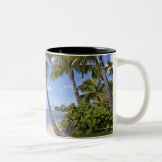 Palm trees on the beach in Hawaii. Two-Tone Coffee Mug