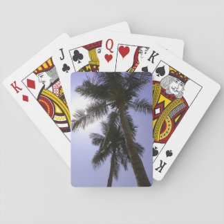 Palm Trees Poker Deck