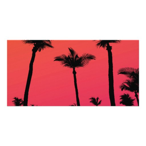 Palm Trees Silhouettes at Sunset Photo Cards