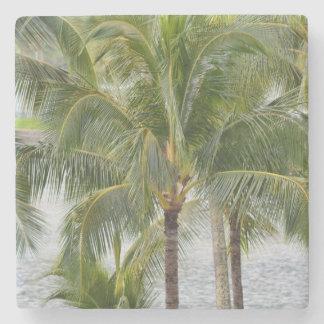 Palm Trees Stone Coaster