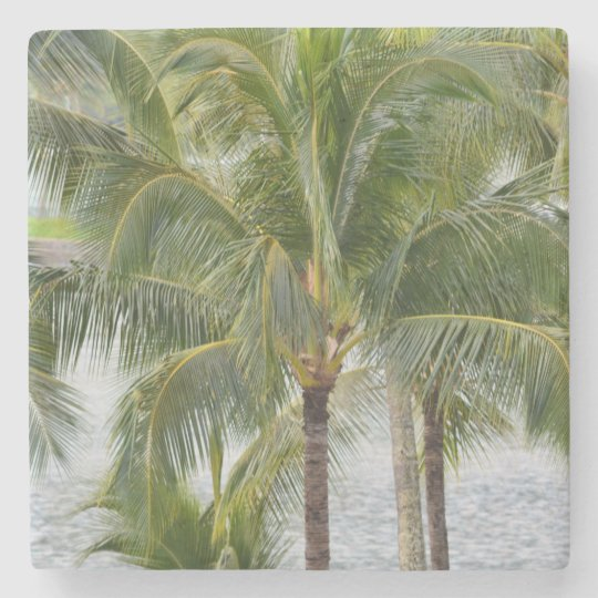 Palm Trees Stone Coaster