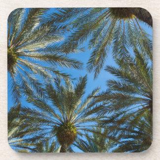 Palm Trees Umbrella Coaster