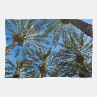 Palm Trees Umbrella Kitchen Towels