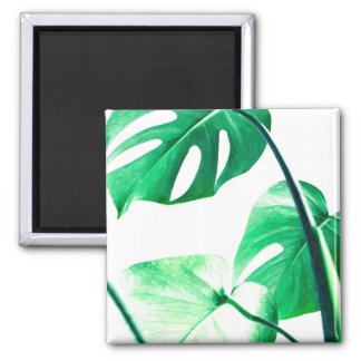 Palm tropical monstera leaves modern watercolor magnet
