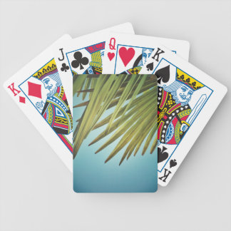 Palm whisk in the summer sky bicycle playing cards