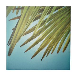 Palm whisk in the summer sky tile