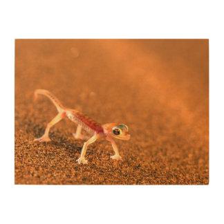 Palmatogecko On Sand Dune, Swakpomund, Erongo Wood Canvases