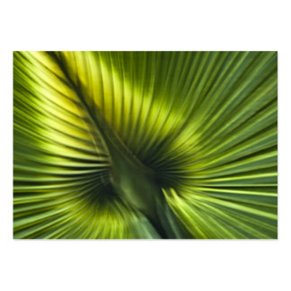 Palmetto Frond Abstract - ACEO 11 Business Card Templates