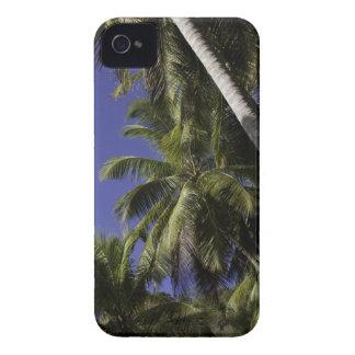 Palmiers sur une île tropicale des Caraïbes Coques iPhone 4 Case-Mate