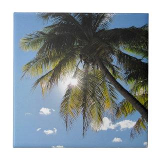 Palms Ceramic Tile