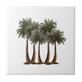 Palms of Paradise Tile