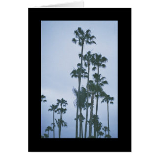 Palms of Summer- Song of Sol. 2:3 Greeting Card