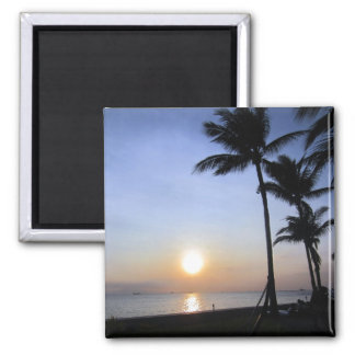 palms sunset square magnet