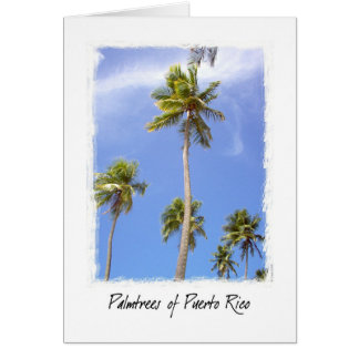 Palmtrees of Puerto Rico Card