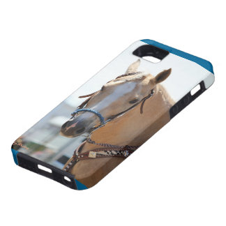 Palomino Case For The iPhone 5
