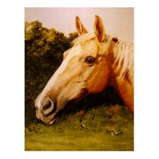 Palomino Horse Art Postcard