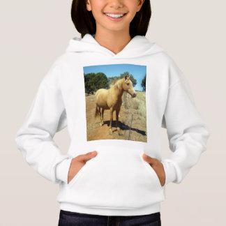 Palomino Horse Beauty,