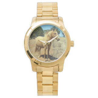 Palomino Horse Beauty, Watch