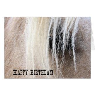 Palomino Horse Eye Birthday Card