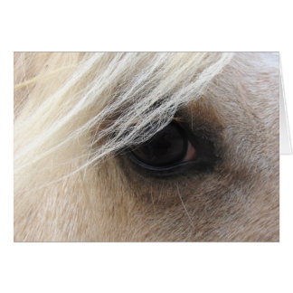 Palomino Horse Eye, Father's Day Card