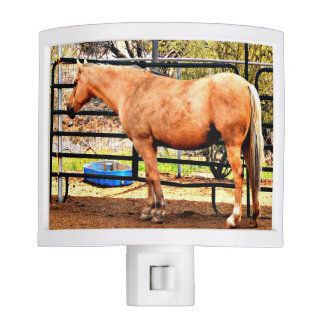Palomino Horse Night Light
