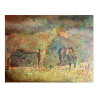 Palomino Mare and Foal Postcard
