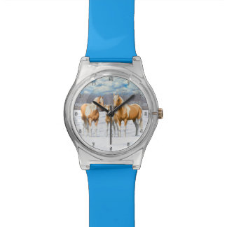 Palomino Paint Horses In Snow Watch