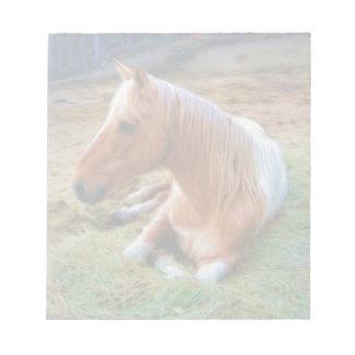 Palomino Pinto Horse Resting Artwork Notepad
