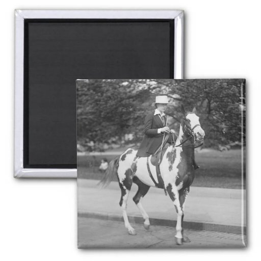Palomino Pony, 1915 Fridge Magnet