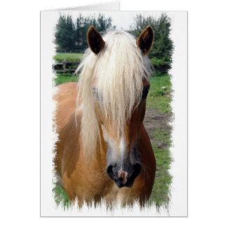 Palomino Quarter Horse Greeting Card