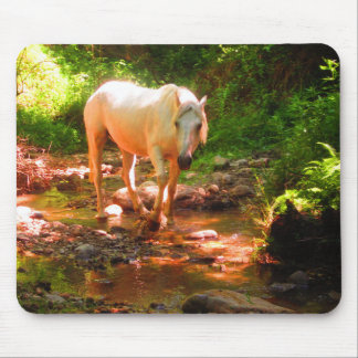 Palomino Quarter Horse Mouse Pad