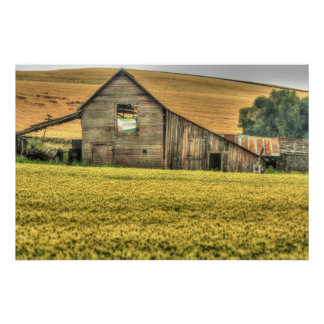 Palouse Area of Eastern Washington, USA Poster