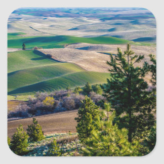 Palouse Country - Eastern Washington Square Sticker