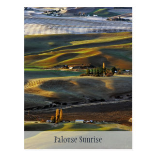 Palouse Sunrise Postcard