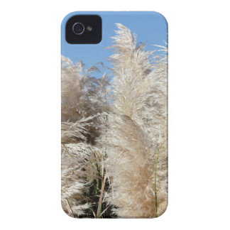 Pampas Grass with a Sunny Blue Sky Case-Mate iPhone 4 Case