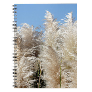 Pampas Grass with a Sunny Blue Sky Notebooks