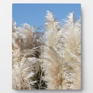 Pampas Grass with a Sunny Blue Sky Plaque