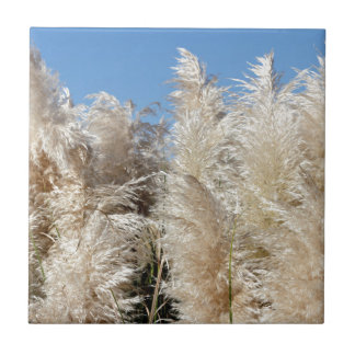 Pampas Grass with a Sunny Blue Sky Tile