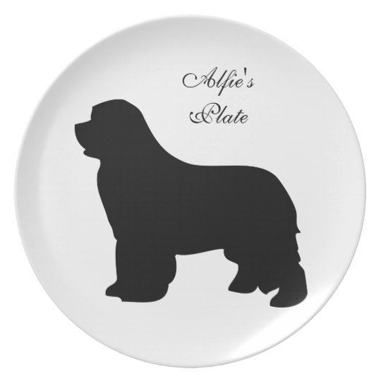 Pampered pet custom name food dish,  plate