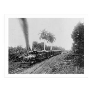 Pan American Central Railroad in Guatemala Postcard