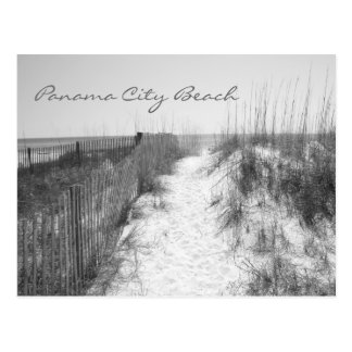 Panama City Beach Access Black & White Postcard